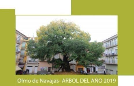SYMPOSIUM NACIONAL DE ARBOLES SINGULARES
